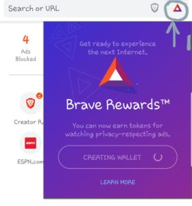 brave browser wallet