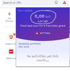 brave browser wallet and in currency $